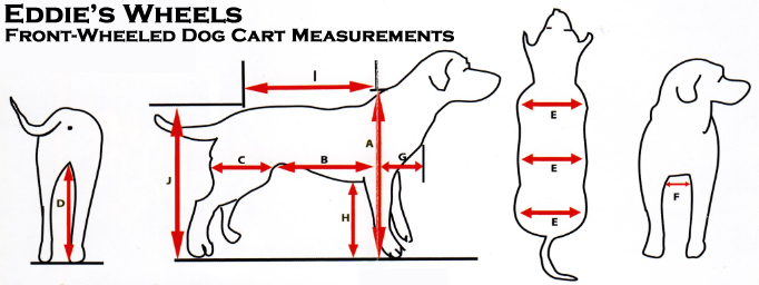 Order a Quad Cart - Eddie's Wheels for Pets - The Pet